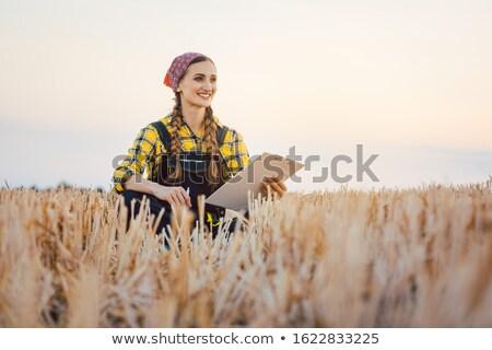 фермер сидят области планирования следующий Сток-фото © Kzenon