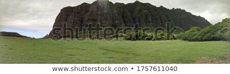 Völgy dinoszauruszok 3d render illusztráció természet tájkép Stock fotó © orla
