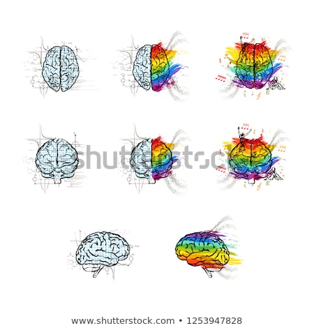 Set of technical and creative hemispheres on human brain in different views, left and right brain fu Stock photo © evgeny89