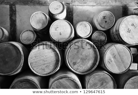 Wooden oak brandy wine beer barrels rows Stock photo © dmitry_rukhlenko