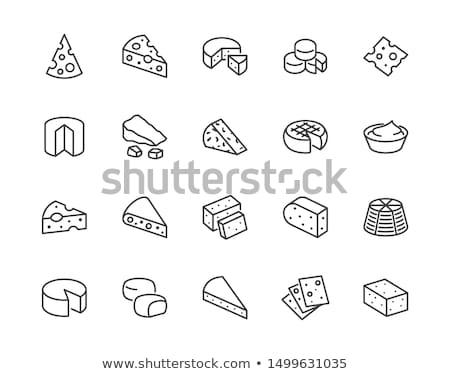 Piece Of Hard Cheese Icon Vector Outline Illustration Stok fotoğraf © Nadiinko