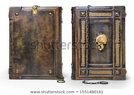 captured old books Stock photo © pterwort