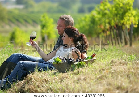 Couple picking grapes in a vineyard Stock photo © photography33