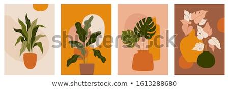 Сток-фото: набор · тропические · Баннеры · цветок · счастливым · фон