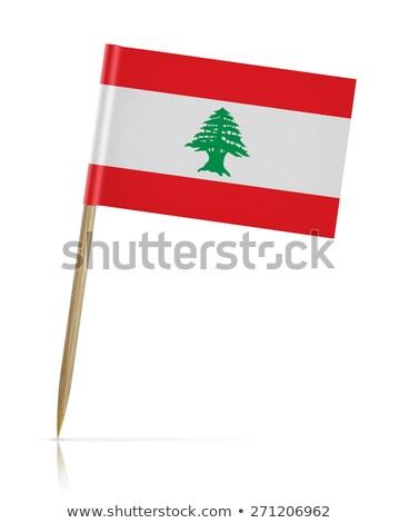 ミニチュア フラグ レバノン 孤立した 会議 ストックフォト © bosphorus