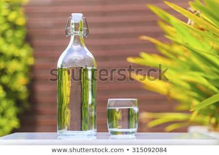 fresh cold clear mineral water in bottle and glass on table Stock photo © juniart