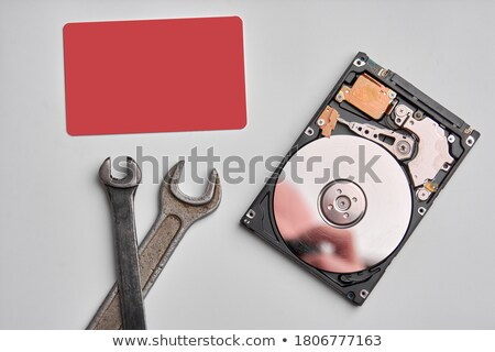 technician with open hard-disk Stock photo © gewoldi