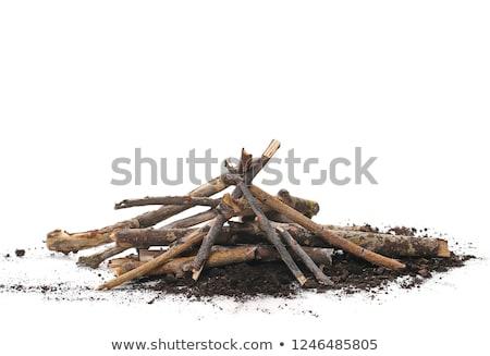 куча гнилой огня древесины крест зеленый Сток-фото © pzaxe