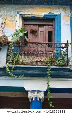 Haveloos woon- huizen Havanna Cuba gebouw Stockfoto © haraldmuc