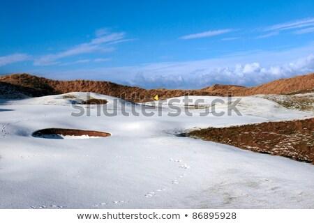golfbaan · groene · sneeuw · Blauw · vlag · gedekt - stockfoto © morrbyte