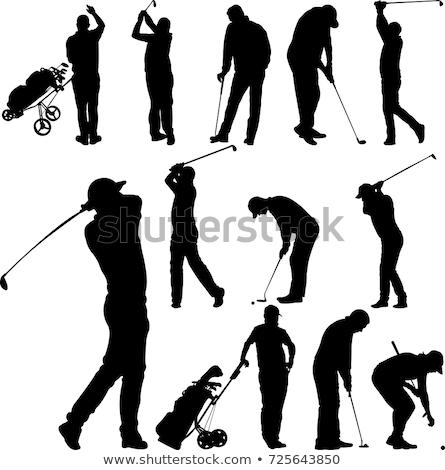 Golfozó ikon golf cél játék Stock fotó © Myvector