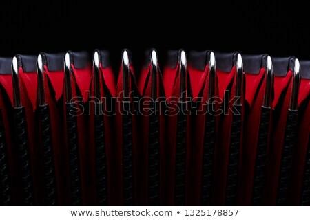 красный аккордеон подробность изолированный черный ретро Сток-фото © jonnysek