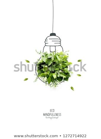 Ecológico lâmpada reciclar símbolo tecnologia verde Foto stock © Quka