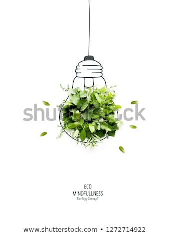 Ecologisch lamp recycleren symbool technologie groene Stockfoto © Quka