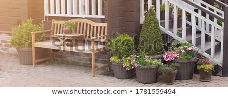 outdoor · mobili · cedro · legno · patio · nice - foto d'archivio © 3523studio