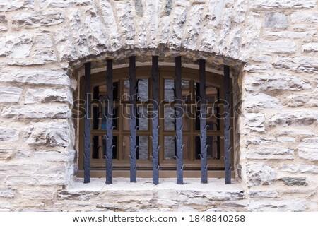arched window ironwork pattern Stock photo © sirylok