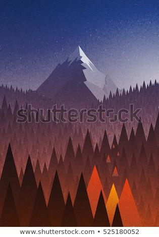 absztrakt · erdő · tűz · három · fák · láng - stock fotó © kimmit