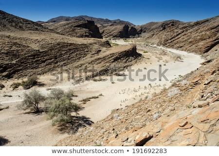 Kuiseb Canyon Area in Sossusvlei, Namibia Stock photo © imagex