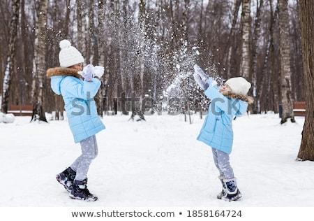beleza · inverno · seis · flocos · de · neve · retrato · menina - foto stock © racoolstudio
