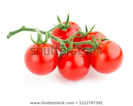 Cluster tomato in green color Stock photo © sundaemorning