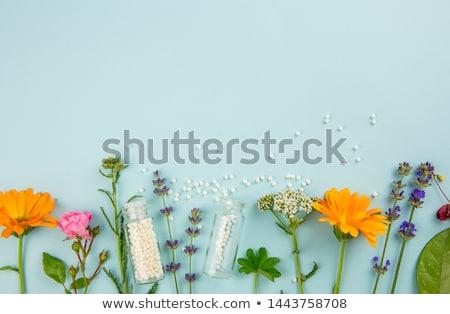 Homeopátia piros pecsét fehér orvosi gyógyszer Stock fotó © chrisdorney