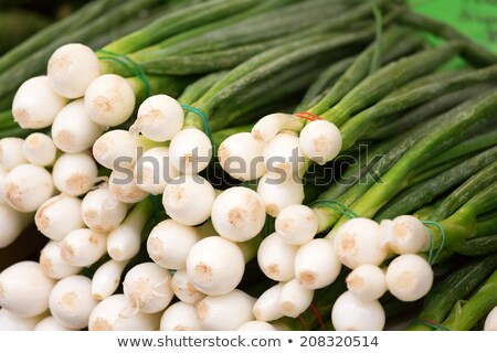 Stock fotó: Green Onions At Market
