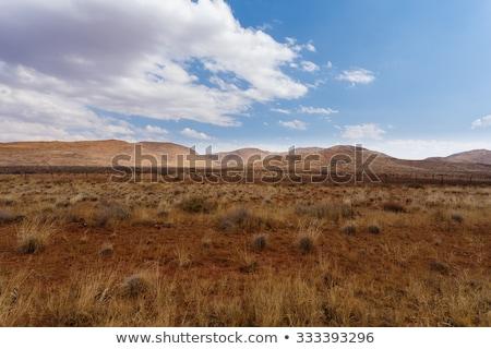 Fantrastic Namibia Desert Landscape Zdjęcia stock © Artush