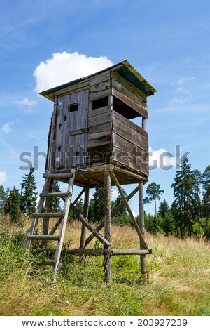 Hunters lookout tower Stock photo © gabor_galovtsik