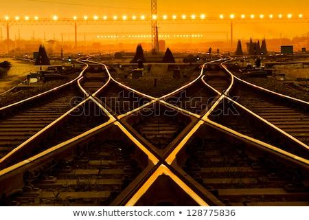Cargo train platform stock photo © dzejmsdin