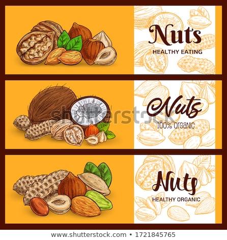nuts and walnut stock photo © laky981