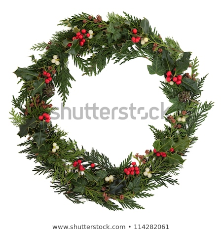 Colorful natural pine Christmas wreath on cedar Stock photo © ozgur