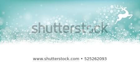 Ciano flocos de neve rena natal Foto stock © limbi007