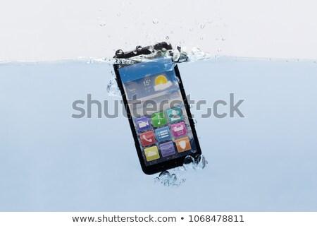 Sualtı örnek yengeç su telefon Stok fotoğraf © adrenalina
