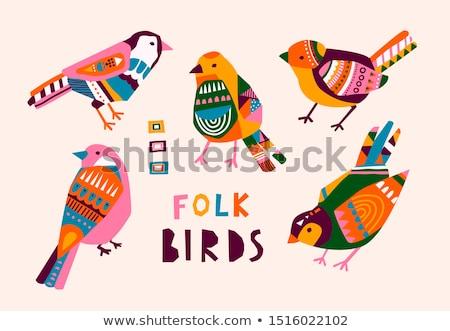 aranyos · absztrakt · madarak · gyűjtemény · izolált · fehér - stock fotó © curiosity