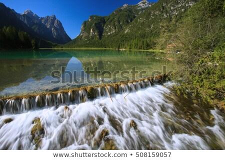 водопада итальянский Альпы природы пейзаж деревья Сток-фото © OleksandrO