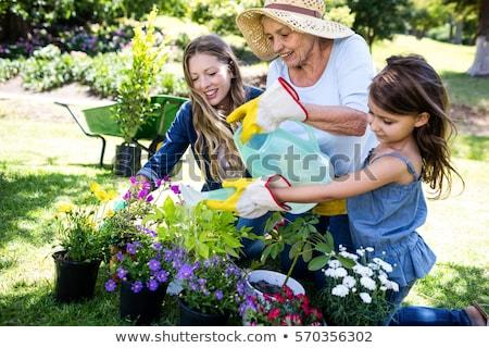 Grootmoeder kleindochter tuinieren park vrouw Stockfoto © wavebreak_media