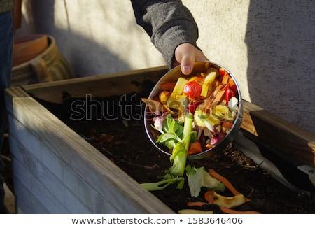 человека задний двор рабочих Постоянный среде садоводства Сток-фото © IS2