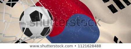 Voetbal doel net republiek vlag Stockfoto © wavebreak_media