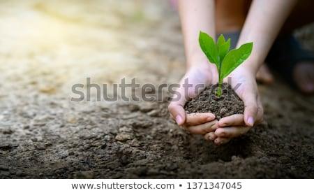 環境 保存 地球 ポスター 人 ストックフォト © robuart