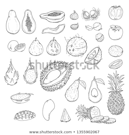 набор экзотический фрукты страсти кокосового синий Сток-фото © artjazz