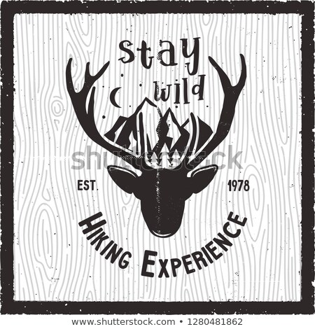 Adventure poster - Stay Wild hiking experience quote design. Old school hand drawn t shirt print app Stock photo © JeksonGraphics
