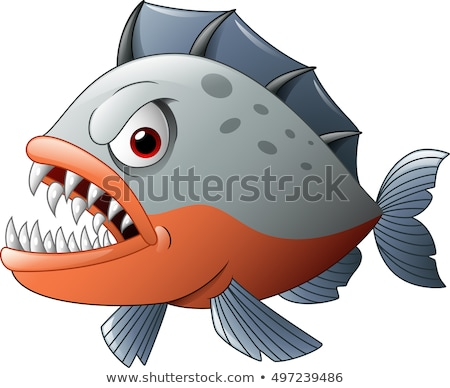 Zangado desenho animado piranha ilustração peixe Foto stock © cthoman