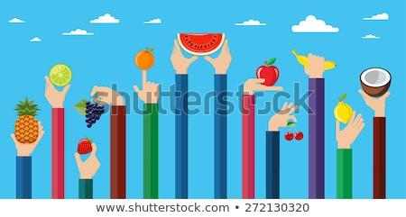 illustratie · handen · verschillend · vruchten · vegetarisch · eten - stockfoto © dejanj01