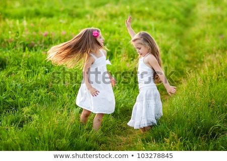 blond · petite · fille · Daisy · fleur · de · printemps · prairie · domaine - photo stock © elenabatkova