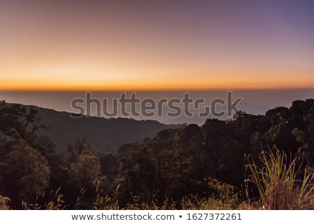 Sun rising up over a horzon of fog in Blue Mountains Stock photo © lovleah