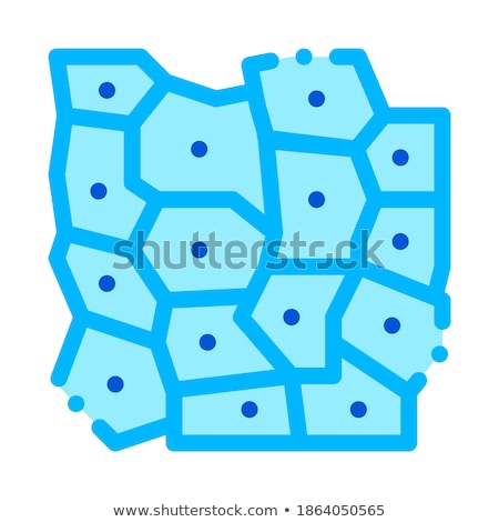 Microscopic Derm Cell Vector Sign Thin Line Icon Stock photo © pikepicture