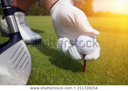 Hand in glove placing golf ball on tee Stock photo © cookelma