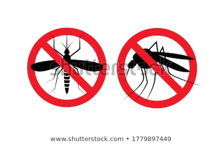 Gnat or mosquito insect Stock photo © ia_64