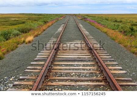 vintage · ferrovia · céu · metrô · poder · aço - foto stock © koratmember