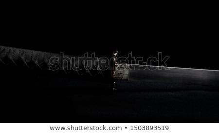 Japon durmak kılıç mor silah bıçak Stok fotoğraf © bugstomper